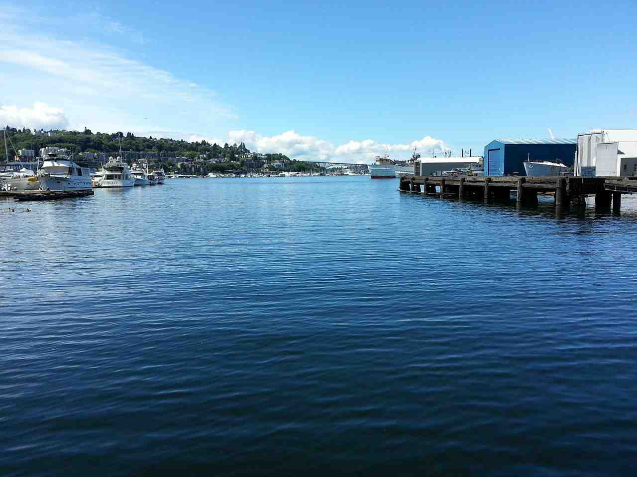 seattle, l'eau, syndicat sud lac